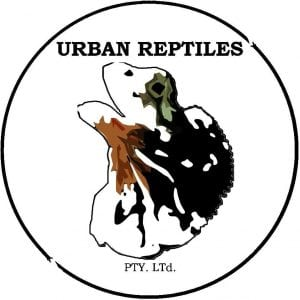 URBAN REPTILES - 24/7 Snake Catchers